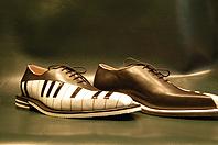 Crazy Shoe 2008