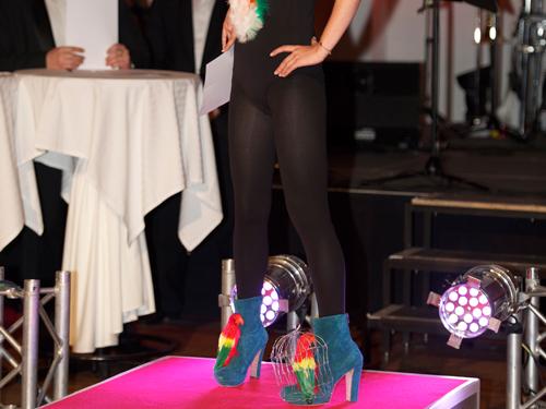 Schuhmacherball 2011